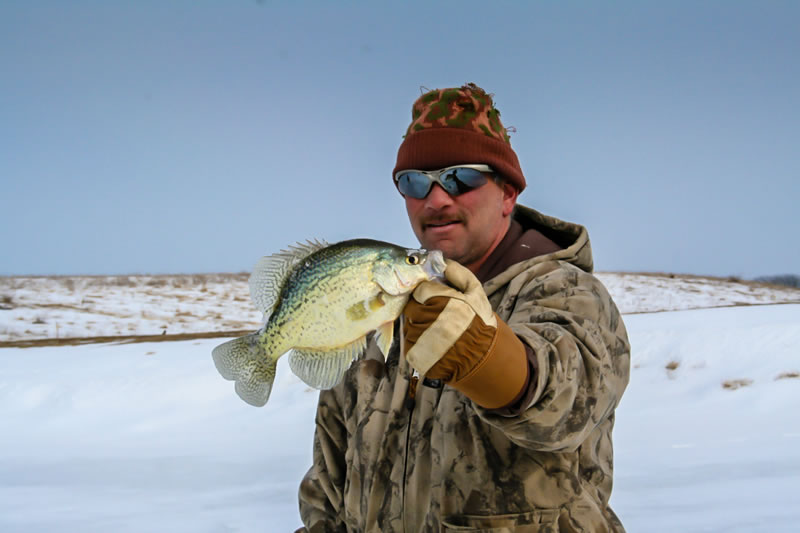 Hog Farm Pond Crappie